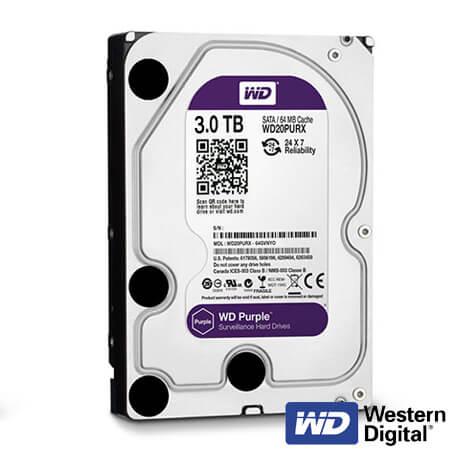 Cel mai bun pret pentru Hard Disk-uri WESTERN DIGITAL SURVEILLANCE-3000GB <u>Special pentru supraveghere video</u>